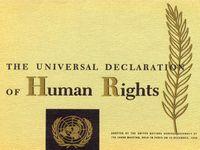 WwwwwwwwwwwwwwwwwPillar7-Society-Universal-Declaration-of-Human-Rights