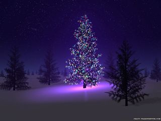 EEEEEEEEEEEEEEEEEbeautiful-christmas-tree
