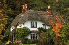 Thathched house