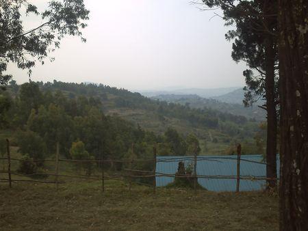 Nyanza 1 nature