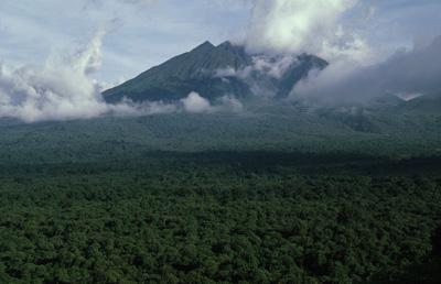 Virunga-national-park 3 (2)
