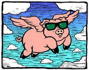 Flyingpighar0017